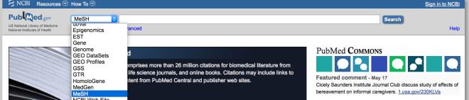 PubMed MeSH